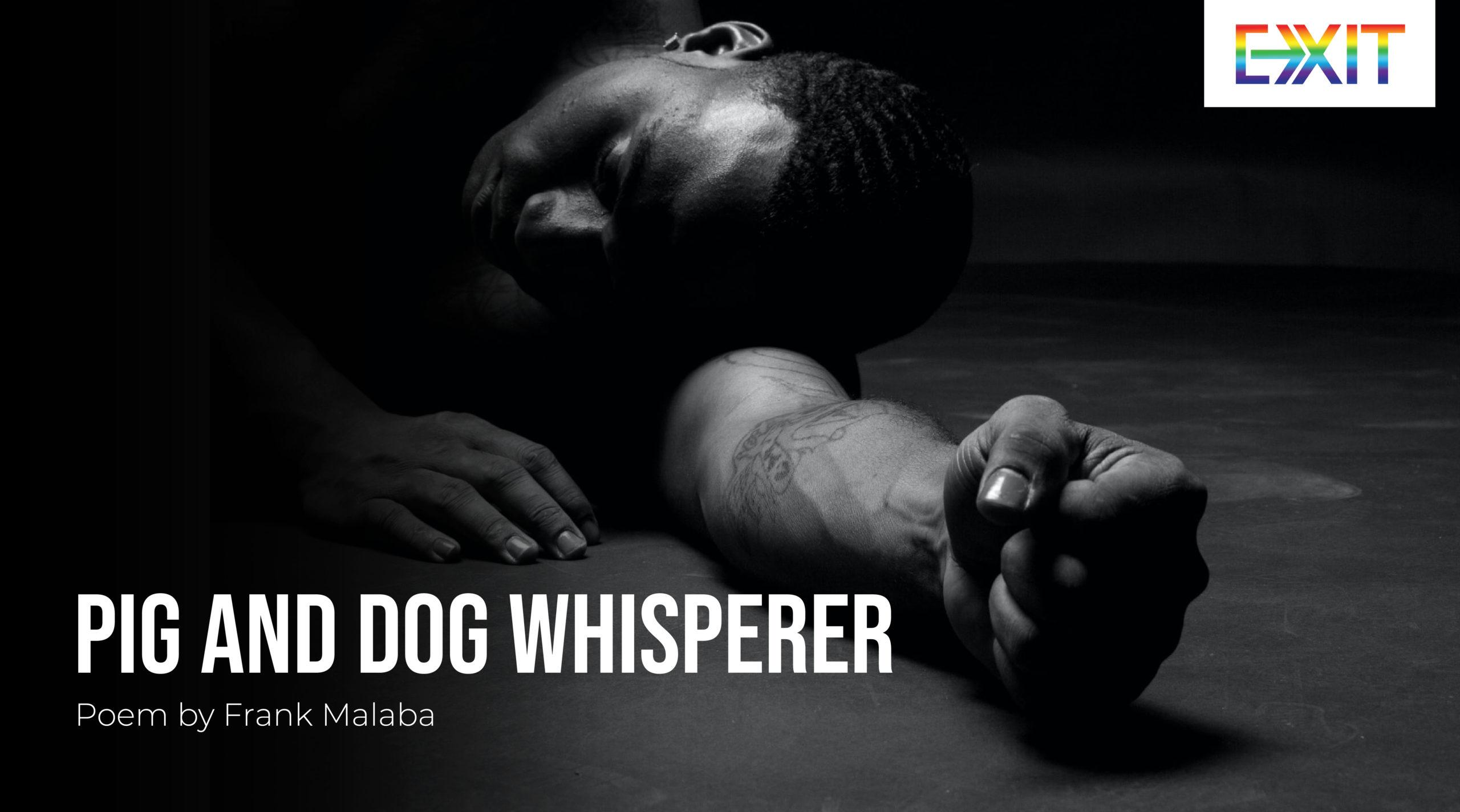 PIG AND DOG WHISPERER
